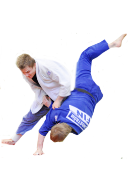 Judo Player