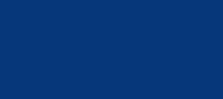 Poliisi Logo